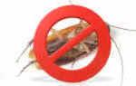 Delaware Pest Services Newark Delaware